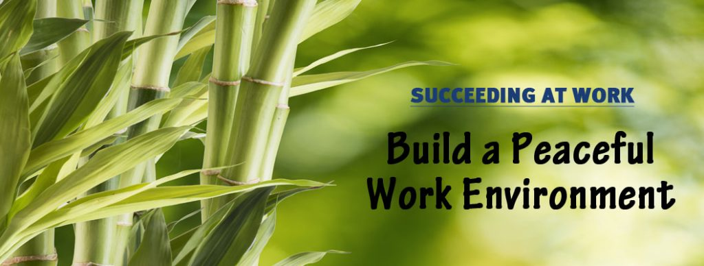 Build a peaceful work environment