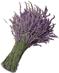 Use herbs like lavender to spruce up your home