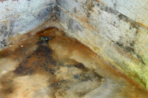 Water damage and mold in basement.