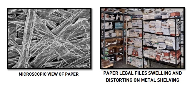 Microscopic View of Paper