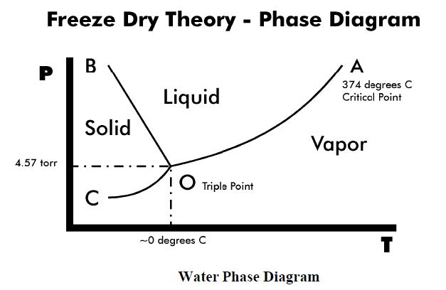 Freeze Dry Theory