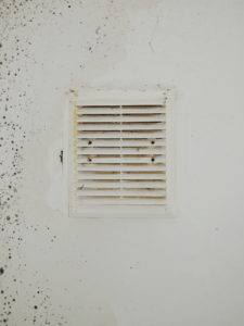 Prevent Mold in Air Ducts