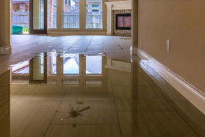 Recover From Home Water Damage