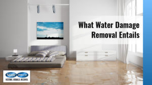 What Water Damage Removal Entails