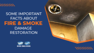 Important Facts About Fire & Smoke Damage Restoration